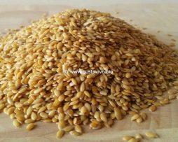 semi di lino dorato